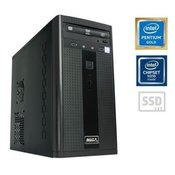 MEGA 2000 G5400 4GB/120GB WIN
