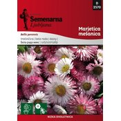SEMENARNA seme Marjetica mešanica Bellis perennis 2570, mala vrečka