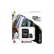 KINGSTON Memorijska kartica MicroSD CANVAS SELECT PLUS 256 GB - SDCS2/256GB -   microSD, 256GB, UHS U3