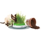 Hagen pripomoček za gojenje trave Grass Planter Catit 2.0