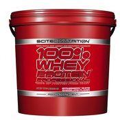 SCITEC NUTRITION sirutka 100% Whey Protein Professional 5kg