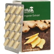 Ginger Extract Capsules-90 Capsules