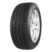 MASTER STEEL zimska pnevmatika 205 / 50 R17 93H WINTER + IS-W XL