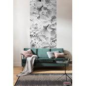 Meblo Trade Foto tapeta Shades Black & White 100x250h cm