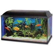 CAT-GATO akvarij in dodatki (80x30x40cm)