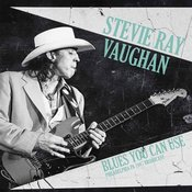 Stevie Ray Vaughan Blues You Can Use (2 LP)