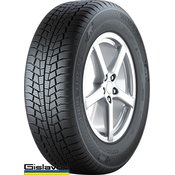 GISLAVED zimska pnevmatika 195/65R15 91T Euro*Frost 6