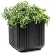 Curver Velika saksija za cve?e Cube Planter M 21.5L