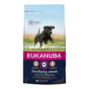 Eukanuba hrana za pse Junior Large, 15 kg