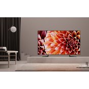 SONY LED TV KD-65XF9005