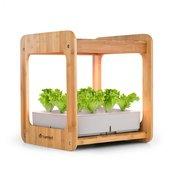 Blumfeldt Urban Bamboo, hidroponski biljni sustav, 12 biljaka, 24 W LED, 7 l, bambus