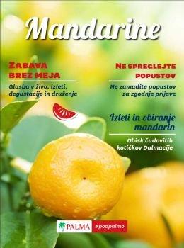 Palma katalog