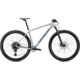 Specialized Epic HT Comp Dove Grey 2020